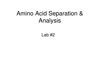Amino Acid Separation & Analysis