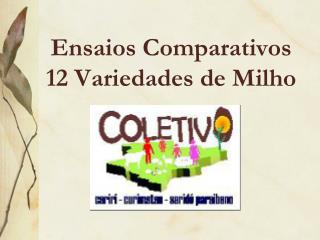 Ensaios Comparativos  12 Variedades de Milho