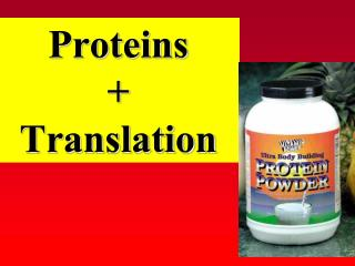 Proteins + Translation