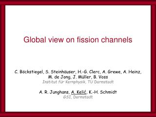 Global view on fission channels