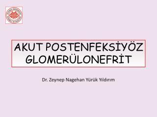 Dr. Zeynep Nagehan Yürük Yıldırım