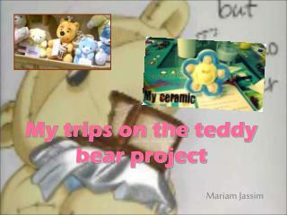 My trips on the teddy bear project