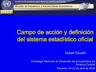 Campo de acci n y definici n  del sistema estad stico oficial
