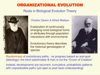 ORGANIZATIONAL EVOLUTION