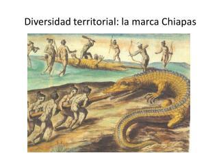 Diversidad territorial: la marca Chiapas