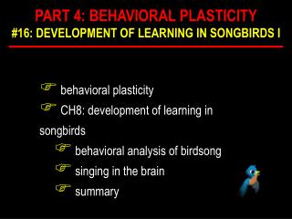 behavioral plasticity  CH8: development of learning in songbirds  behavioral analysis of birdsong