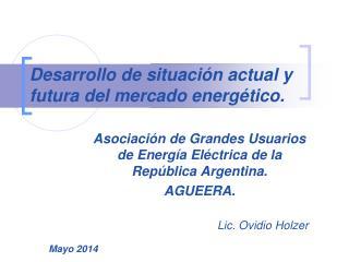 Desarrollo de situación actual y futura del mercado energético.