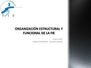 ORGANIZACIÓN ESTRUCTURAL Y FUNCIONAL DE LA FIE