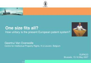 One size fits all? How unitary is the present European patent system?