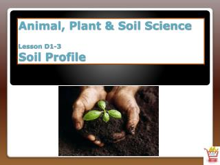 Animal, Plant & Soil Science Lesson D1-3 Soil Profile