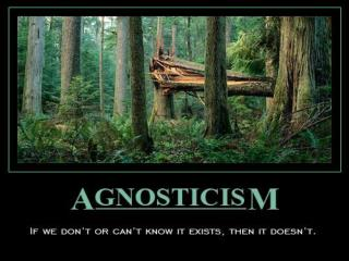 THEISTIC HYPOTHESIS