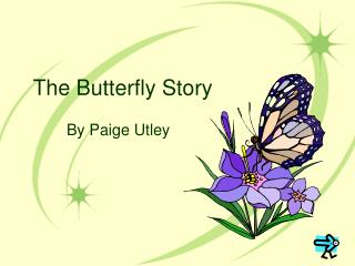 The Butterfly Story