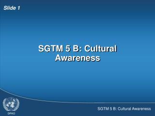 SGTM 5 B: Cultural Awareness