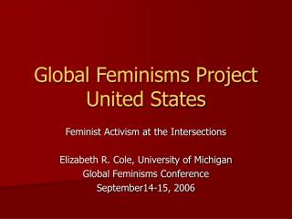 Global Feminisms Project United States