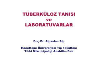 Türkiye'de Tüberküloz Kontrolü: Son Beş Yılda Neler Değişti?