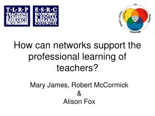 How can networks support the professional learning of teachers?