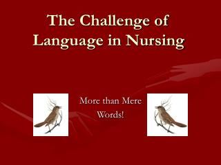 The Challenge of Language in Nursing