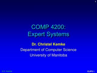 COMP 4200:  Expert Systems