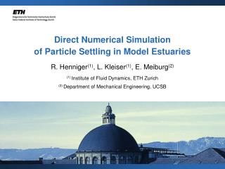 Direct Numerical Simulation of Particle Settling in Model Estuaries
