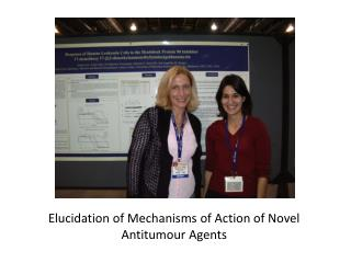Elucidation of Mechanisms of Action of Novel  Antitumour  Agents