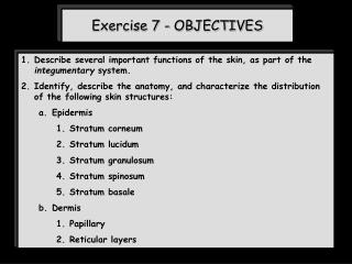 Exercise 7 - OBJECTIVES