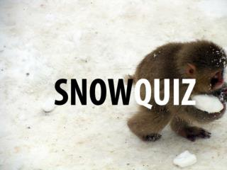 How many people where in the world's largest snowball fight?