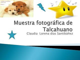 Muestra fotográfica de Talcahuano