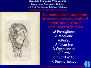 U.O.S.Anatomia Patologica-Ospedale F.Betania-ASL NA1