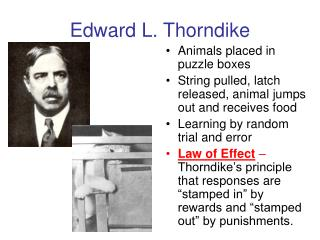 Edward L. Thorndike
