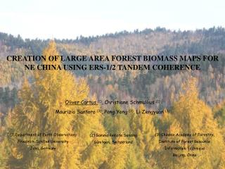 CREATION OF LARGE AREA FOREST BIOMASS MAPS FOR NE CHINA USING ERS-1/2 TANDEM COHERENCE