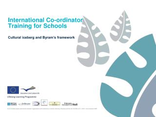 International Co-ordinator  Training for Schools
