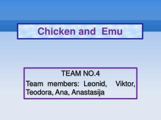 TEAM NO.4 Team members: Leonid,  Viktor, Teodora, Ana, Anastasija