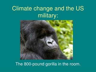 Climate change and the US military: