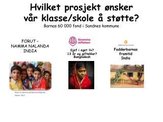 Hvilket prosjekt ønsker  vår klasse/skole å støtte? Barnas 60 000 fond i Sandnes kommune