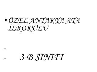 ÖZEL ANTAKYA ATA İLKOKULU                         3-B SINIFI