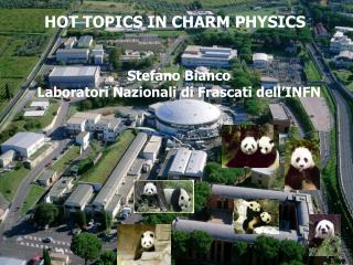 HOT TOPICS IN CHARM PHYSICS