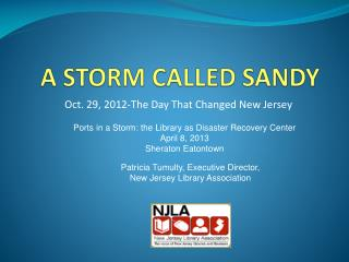 A STORM CALLED SANDY