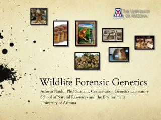 Wildlife Forensic Genetics