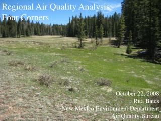 October 22, 2008 Rita Bates New Mexico Environment Department Air Quality Bureau