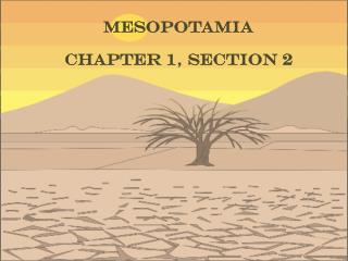 Mesopotamia Chapter 1, Section 2