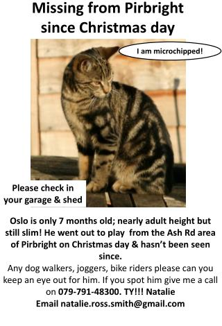 Missing from Pirbright  since Christmas  day