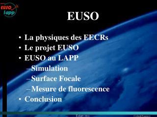 La physiques des EECRs Le projet EUSO EUSO au LAPP Simulation Surface Focale