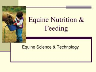 Equine Nutrition & Feeding