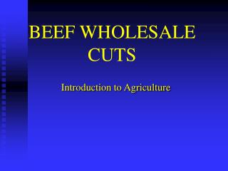 BEEF WHOLESALE CUTS