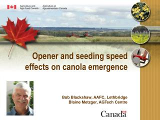 Opener and seeding speed effects on canola emergence