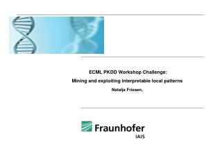 ECML PKDD Workshop  Challenge :  Mining and exploiting interpretable local patterns