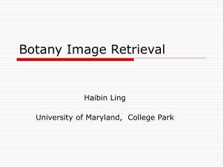 Botany Image Retrieval