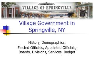 Village Government in Springville, NY
