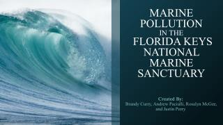MARINE POLLUTION IN THE  FLORIDA KEYS NATIONAL MARINE SANCTUARY