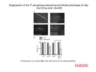 CE Richardson  et al. Nature 463 , 1092-1095 (2010) doi:10.1038/nature08762